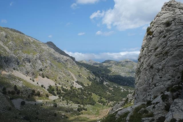 Próxima Salida: Puig de Ses Covasses domingo 24 de febrero